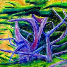 """""""Cypress"""" Oil on canvas"""